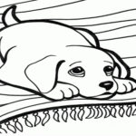 Printable Coloring Pages Dogs And Cats