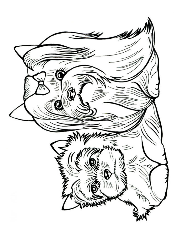 Free Yorkshire Terrier coloring pages. Download and print ...