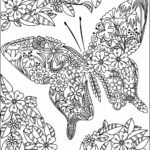 Butterfly Coloring Pages For Adults Pdf