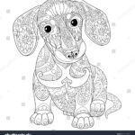 Year Of The Dog Coloring Pages