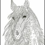 Coloring Pages Horses Realistic