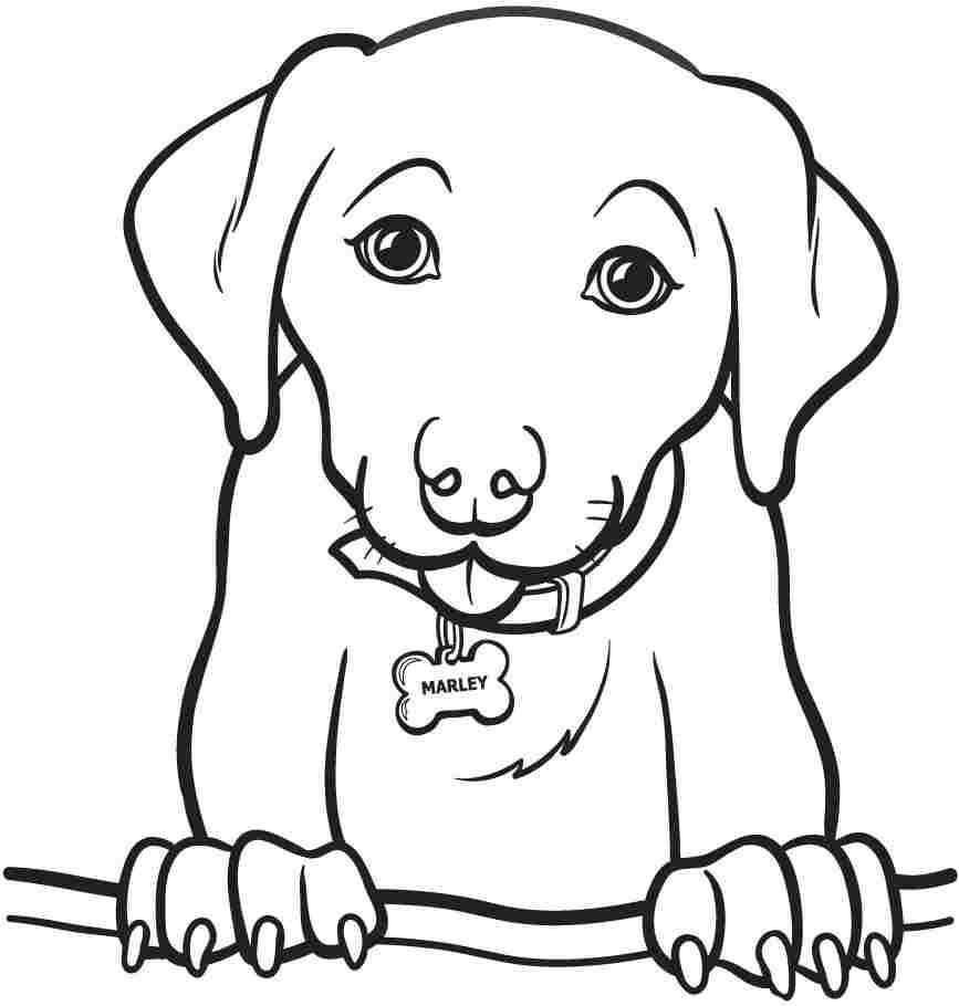 Easy Animal Coloring Pages For Kids - Coloring Home