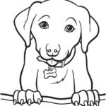 Printable Coloring Pages Of Dogs And Cats