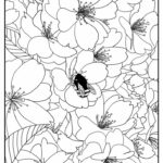 Coloring Pages For Kids Free Printable