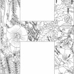 Coloring Book Alphabet For Adults