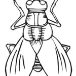 Free Printable Insect Coloring Pages