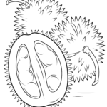 Coloring Pages For Ipad