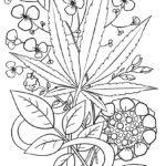 Http://Www.coloring-Pages.org