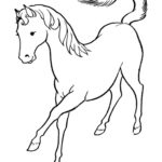 Coloring Horse Pages