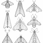 Free Printable Insect Colouring Pages
