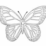 Cute Printable Butterfly Coloring Pages