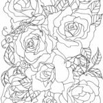 Free Printable Rose Coloring Pages For Adults