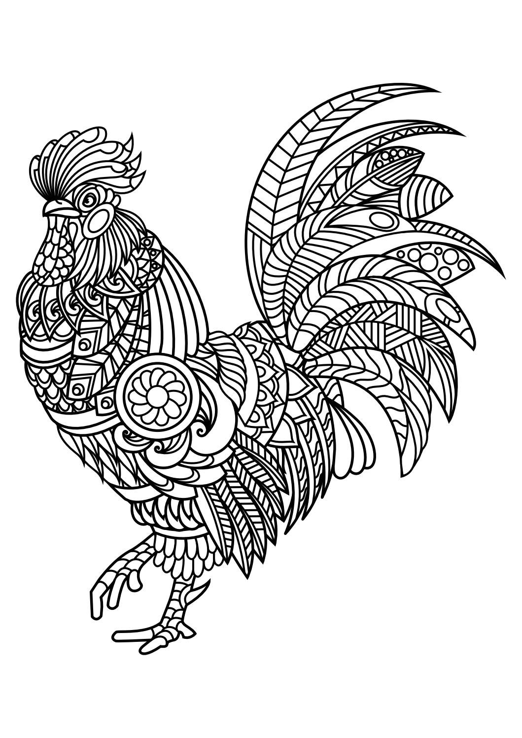 Animal coloring pages pdf   Chicken coloring pages, Bird ...