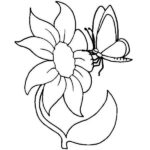 Coloring Pages Flowers And Butterflies