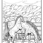 Coloring Pages Horses For Adults