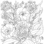 Coloring Pages Free Printable Summer