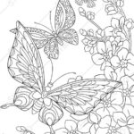 Coloring Pages Butterfly And Flowers