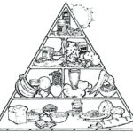 Free Printable Coloring Pages Food Pyramid