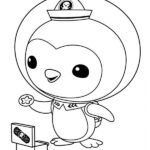 Octonauts Coloring Pages Peso