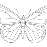 Coloring Pages Monarch Butterfly
