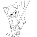 Cat Coloring Pages Realistic