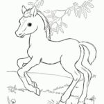 Coloring Pages Printable Pony