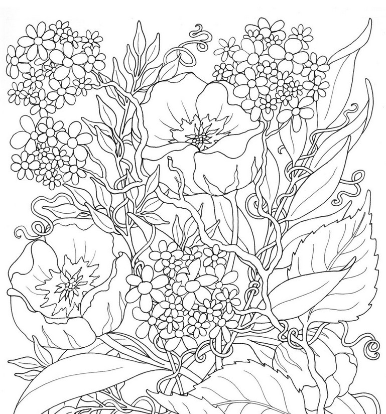 Summer Flowers Coloring Pages at GetColorings.com | Free ...